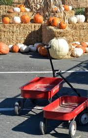 Pumpkin Patch Fresno Ca First News by Two New Locations Offer Pumpkin Patches This Year Local