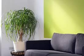 wandfarbe finden top ideen zum gestalten kombinieren