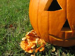 Pumpkin Patch Parable Youtube by Tail Of Two Pumpkins U2013 Nutritious Movement