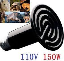 Infratech Heat Lamp Bulb by Infrared Heat Lamp Ebay