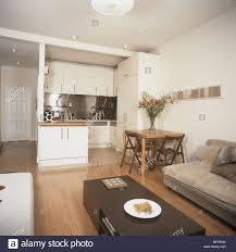moderne offene wohnzimmer gepolstertes sofa tisch küche