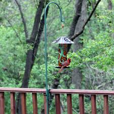 Deck Mounted Bird Feeder Hanger Bird Feeders Pinterest
