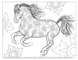 Clever Horse Coloring Book Free Printable Pages For Kids