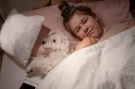 süßes mädchen das im schlafzimmer neben einem hund liegt