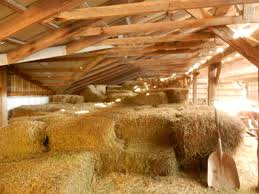 Inside Barn Hay Great Design Of The Interior Kitchen Natural Barn Cversion Inside And Old Barn Photo Straw Bales A Image Inside Chicken House With Coop 10595 Better Built Barns Loft On Lake Hayes Queenstown New Zealand Drawing Of My 1092965785 Ghost Sign Harvest 8 Pennsylvania Ohio Plus Tour Suced By A Aka Daze Shanta Le Tobacco Leaves Hang To Dry Plantation In The Door Modern Doors Hdware Rustic Paulysentry On Deviantart This Is Background