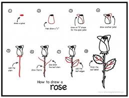 Drawing Tutorial How To Draw A Rose In Eight Easy Steps
