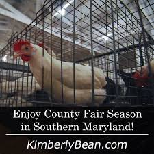 Pumpkin Farms In Southern Maryland by 268 Best Things To Do In Southern Maryland Images On Pinterest