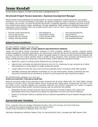 Example Global Finance Resume Free Sample