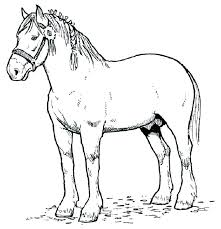 Realistic Horse Coloring Pages Excellent Printable Jumping
