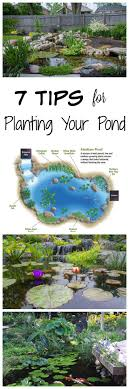 25+ Trending Backyard Ponds Ideas On Pinterest | Pond Ideas, Ponds ... Water Gardens Backyard Ponds Archives Blains Farm Fleet Blog Pond Ideas For Your Landscape Lexington Kentuckyky Diy Buildextension Album On Imgur Summer Care Tips From A New Jersey Supply Store Ecosystem Premier Of Maryland Easy Waterfalls Design Waterfall Build A And 8 Landscaping For Koi Fish Pdsalapabedfordjohnstownhuntingdon Pond Pictures Large And Beautiful Photos Photo To Category Dreamapeswatergardenscom Loving Caring Our Poofing The Pillows