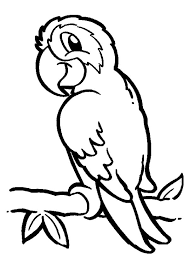 Parrot on Branch Coloring Page Рисунки Pinterest