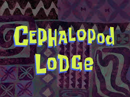 Spongebob That Sinking Feeling Polly Streaming by Cephalopod Lodge Encyclopedia Spongebobia Fandom Powered By Wikia