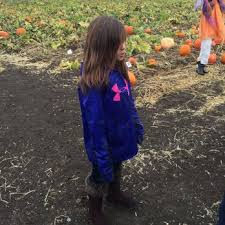 Best Pumpkin Patch Near Roseville Ca by Bobby Dazzler U0027s Pumpkin Patch And Milo Maze Temp Closed 179