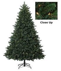 7 Ft White Pre Lit Christmas Tree by Amazon Com 7 U0027 Pre Lit Medium Frasier Fir Easy Shape Artificial