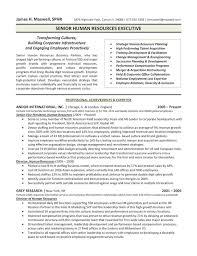 Human Resources Executive Director VP Resume Sample