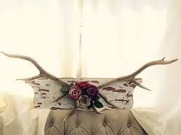 Deer Antler Curtain Holders by Best 25 Deer Antler Decorations Ideas On Pinterest Deer Horns