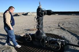 Dan Xmas Tree Wellhead