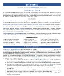 20+ Executive Resume Samples (CXO, VP, Director) Executive Resume Samples And Examples To Help You Get A Good Job Sample Cio From Writer It 51 How To Use Word Example Professional For Ms Fer Letter Senior Australia Account Writing Guide 20 Tips Free Templates For 2019 Download Now Hr At By Real People Business Development Awardwning Laura Smith Clean Template Cover Office Simple Cv Creative Modern Instant Marissa Product Management Marketing Executive Resume Example