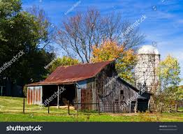 Small Old Rustic Barn White Silo Stock Photo 87557476 - Shutterstock Rustic Old Barn Shed Garage Farm Sitting Farmland Grass Tall Weeds Small White Silo Stock Photo 87557476 Shutterstock Custom Door By Mkarl Llc Custmadecom The Dabbling Crafter Diy Sunday Headboard Sliding Doors Dont Have To Be Sun Mountain Campground Ny 6 Photos Home Design Background Professional Organizers Weddings In Georgia Ritzcarlton Reynolds With Vines And Summer Wildflowers Images Image Scene House Near Lake Ranco Estudio Valds Arquitectos Homes