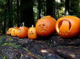 Halloween Picture Books Online by Halloween Scholastic