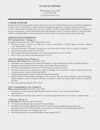 Sample Resume Profile Statement For Customer Service Save Sales