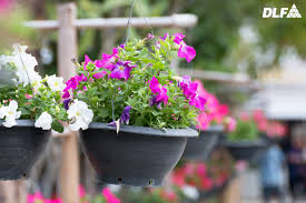 If You Have A Small Balcony And Love Plants Then This Is One Of The Best Ideas For Pot Some Flowers Herbs Into Recycled