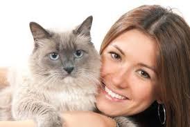 service cats register my service animal better business bureau a rating