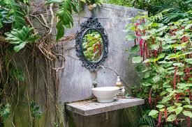Plants For The Bathroom Feng Shui by Bathroom Design Wonderful Plants Suitable For Bathrooms Little