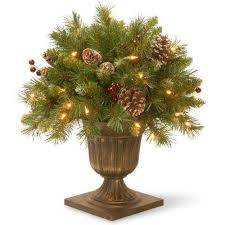 Christmas Tree Shop Syracuse Ny by 100 Christmas Tree Shop Syracuse Ny Address Christmas