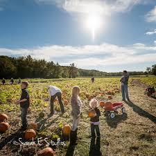 Pumpkin Patches Maryland Heights Mo by Sarah E Studios Griesman Family U2013 Stuckmeyers Farms U2022 St Louis