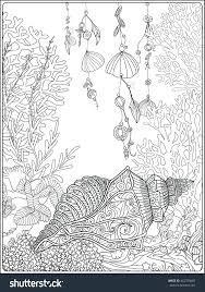 Coral Fish Sea Shells Coloring Page Adults Seashell Sheet Pages Free Sheets Full Size