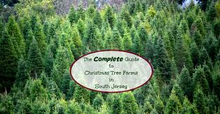 Pumpkin Picking South Nj by The Complete Guide To Christmas Tree Farms In South Jersey