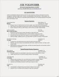 Example Of Chef Resume Examples Template Unique Graphic Templates New Puter Skills Fresh Od Format For
