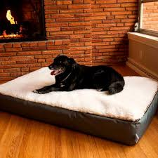 Wayfair Dog Beds by Bedroom Gorgeous Dog Beds Bed Bedding Amazon Orthopedic Right