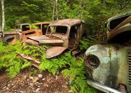 100 Vintage Trucks Old Rusty Trucks Opal Creek Old Truck Decor Trucks Etsy