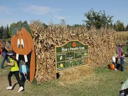 Pumpkin Farm Illinois Best by Best Corn Mazes Near Chicago Cbs Chicago