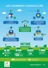 chambre agriculture sarthe les chambres d agriculture en infographie chambres d agriculture