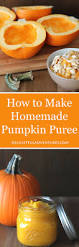Freeze Pumpkin Puree From Can by How To Make Homemade Pumpkin Puree Delightful Adventures