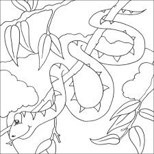 Snake Coloring Picture