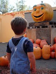 Pumpkin Patch Petaluma Adobe by Journeyleaf Life A Page At A Time Adventures Ca Bay Area