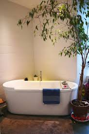 Plants In Bathrooms Ideas by 93 Best La Salle De Bain Images On Pinterest Room Home And