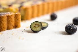 blaubeer käse tarte quark zitrone mohn blaubeeren