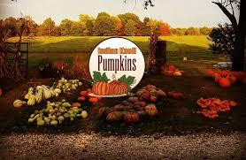 Pumpkin Patch Jacksonville Al by Pumpkin Patch Family Activities In Mechanicsburg Il