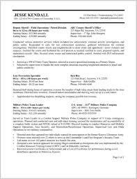 Resume For Federal Jobs Templates 68226 Example Government Resu
