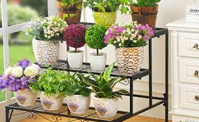 Patio Plant Stands Wheels by Shelving Miraculous Plant Shelves On Wheels Suitable Plant Shelf