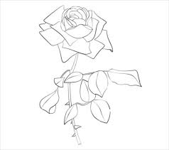 Colouring Book Free Download Software Flower Coloring Pages U2013 22 PSD AI Vector EPS