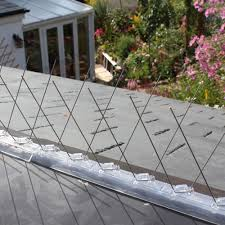 photos defender皰 pigeon bird spikes installed on ledges