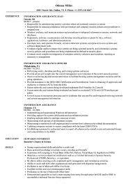 information assurance resume sample
