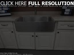 Kohler Sink Protector Rack by Stainless Steel Sink Protector Kohler Best Sink Decoration