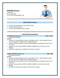 Sample Resume For Sales Demo Combined With